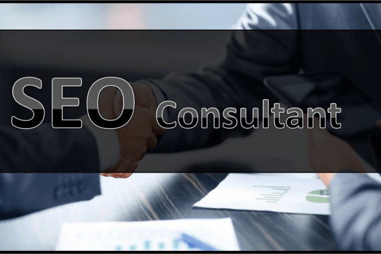 consultant-seo-formation